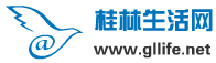 广州吉他新闻网